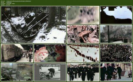 Teslimiyet: Nazi Almanyası'nın Son Direnişi ve Çöküşü