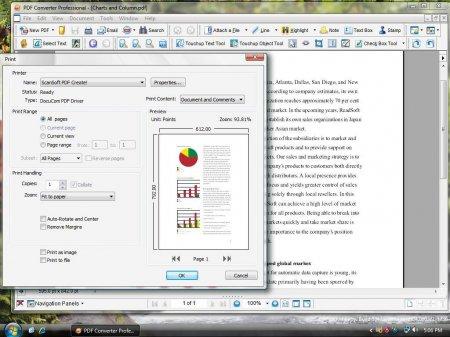 Nuance PDF Converter Professional v8.10.6267