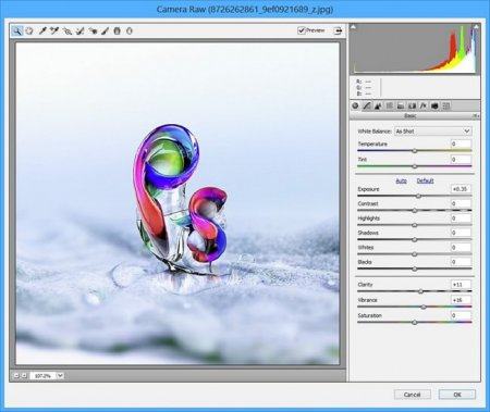 Adobe Camera Raw v9.6.0