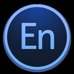 Adobe Media Encoder CC 2017 v11.0 (x64)