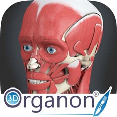 3D Organon Anatomy 3.0.0 ISO