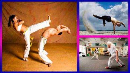 Mastering Capoeira DVD Görsel Eğitim Seti